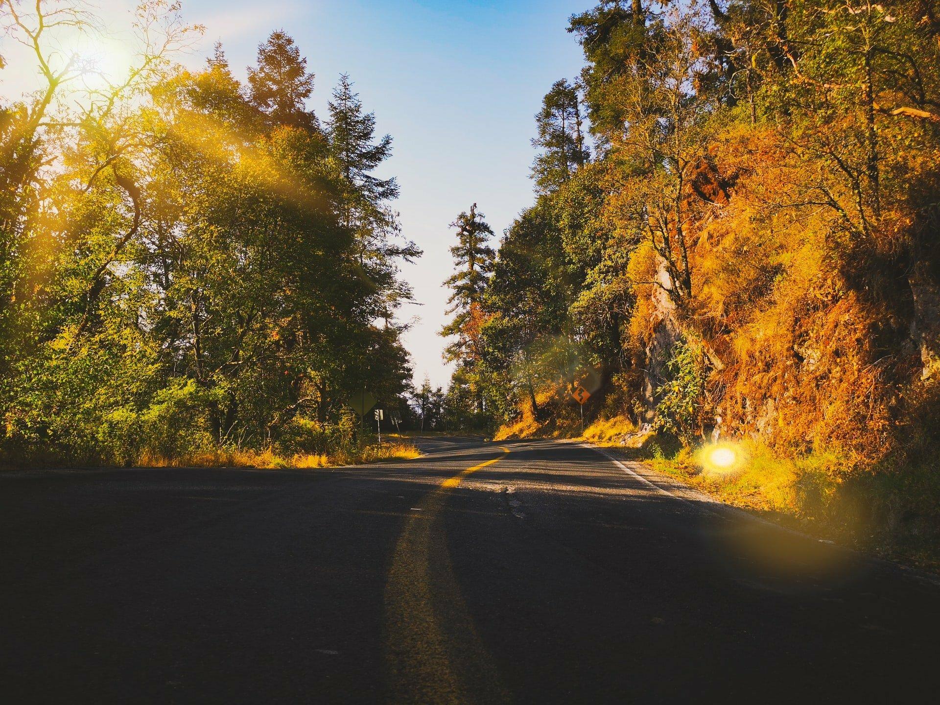 prudencia camino nueva normalidad